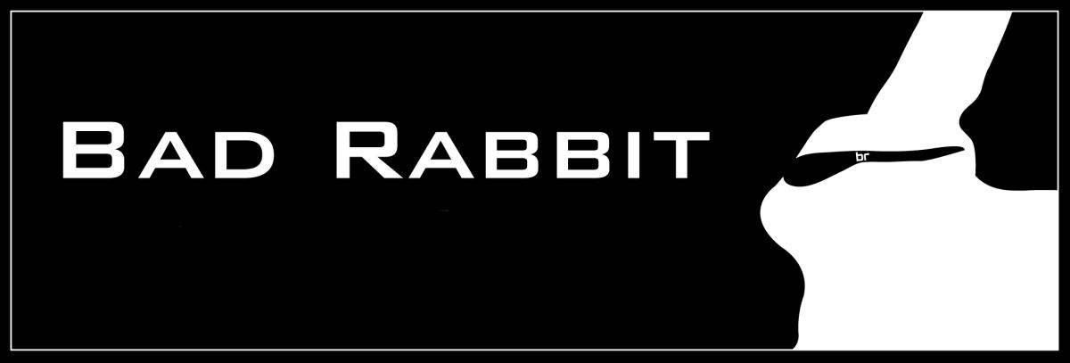 Bad Rabbit é o mais recente ransomware das redes de computadores russas