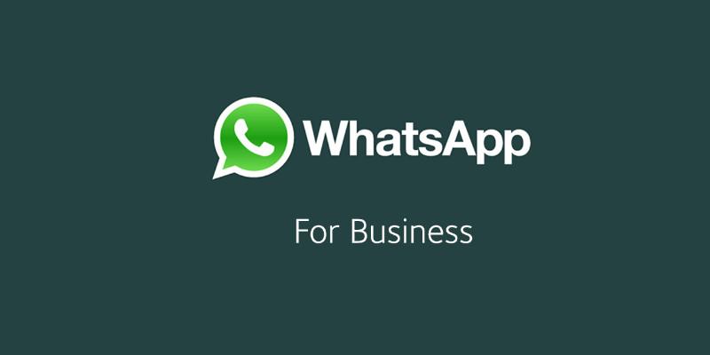 Whatsapp: Novo app Focado em negócios para o Android